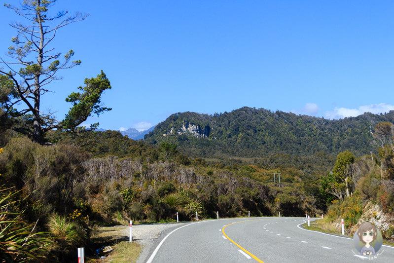 Fahrt entlang der West Coast, Neuseeland