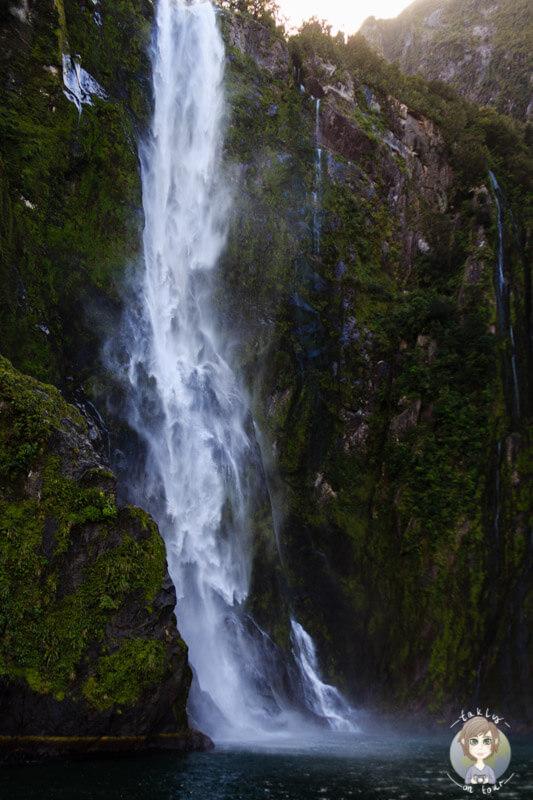 ein hoher Wasserfall am Milford Sound