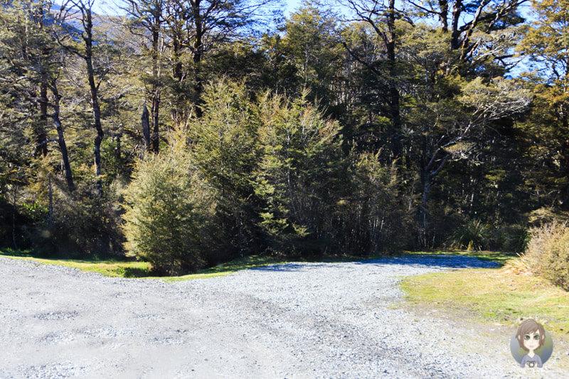 kostenlos übernachten im Deer Valley in Neuseeland (3)