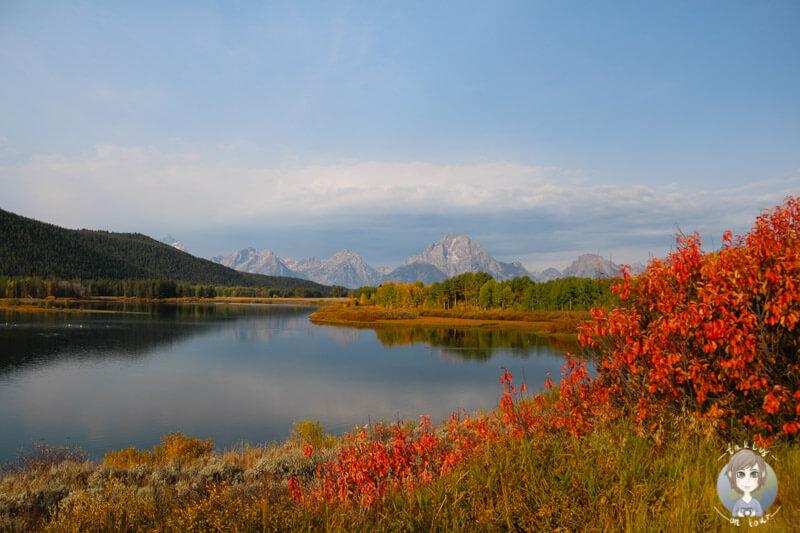 Blick in den herbstlichen Grand Teton National Park da werden Urlaubserinnerungen wach