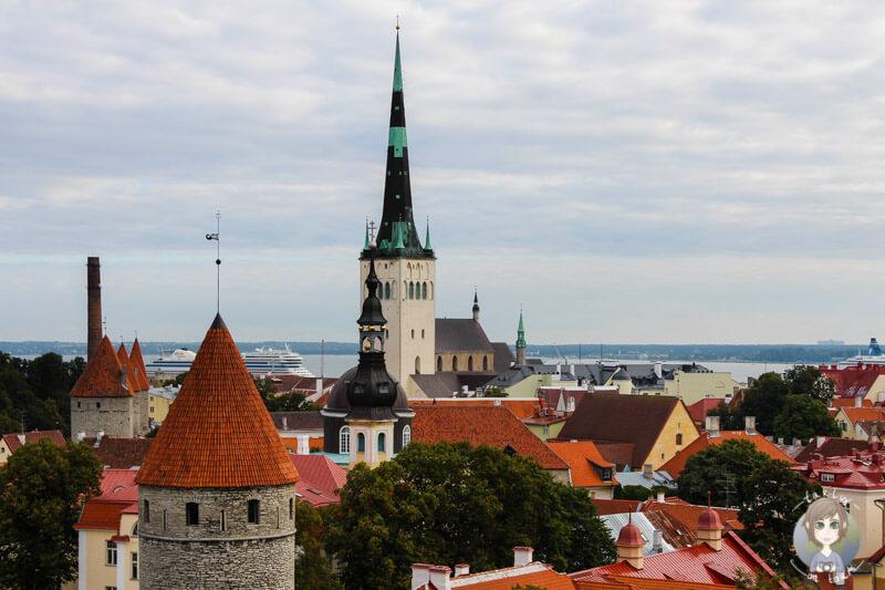 Aussicht auf Tallinn vom Domberg