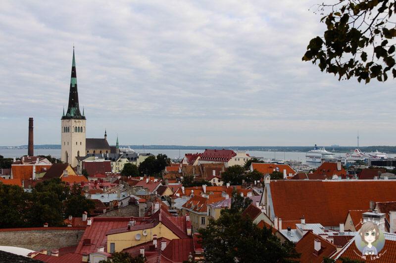 Der Blick auf Tallinn vom Domberg