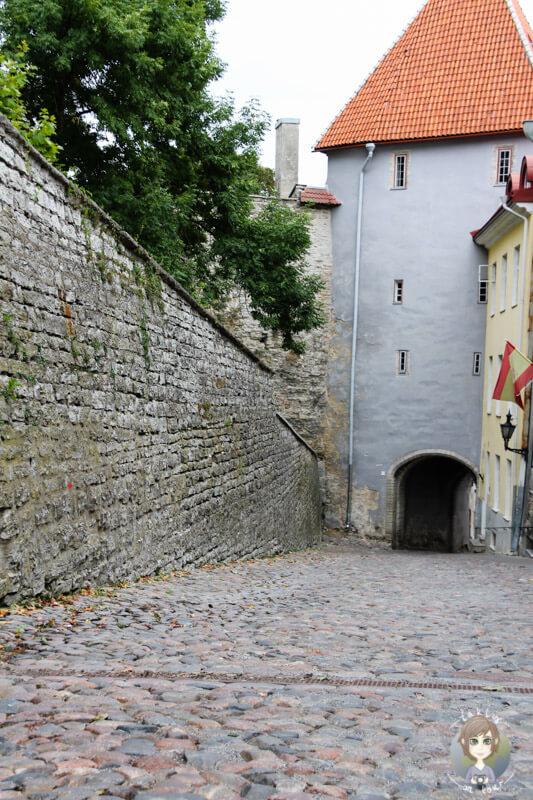 Die Pikk Jalg Gasse in Tallinn