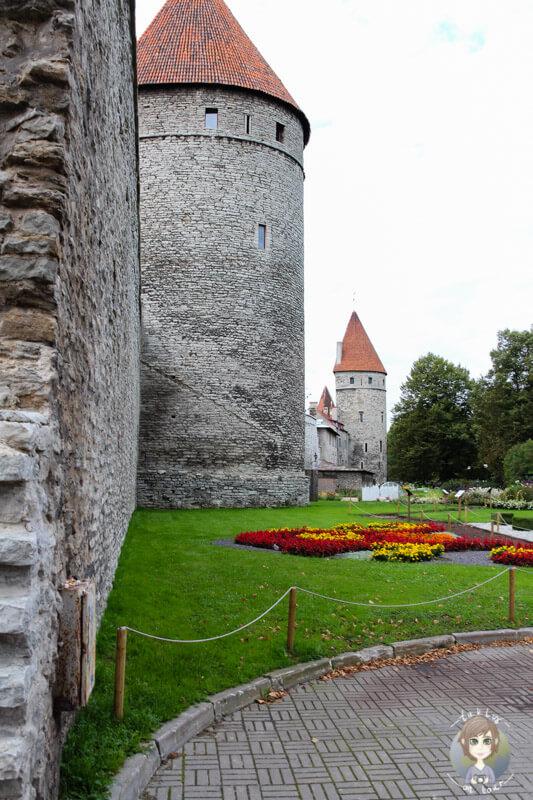 Eine der imposantesten Tallinn Sehenswürdigkeiten ist die Stadtmauer
