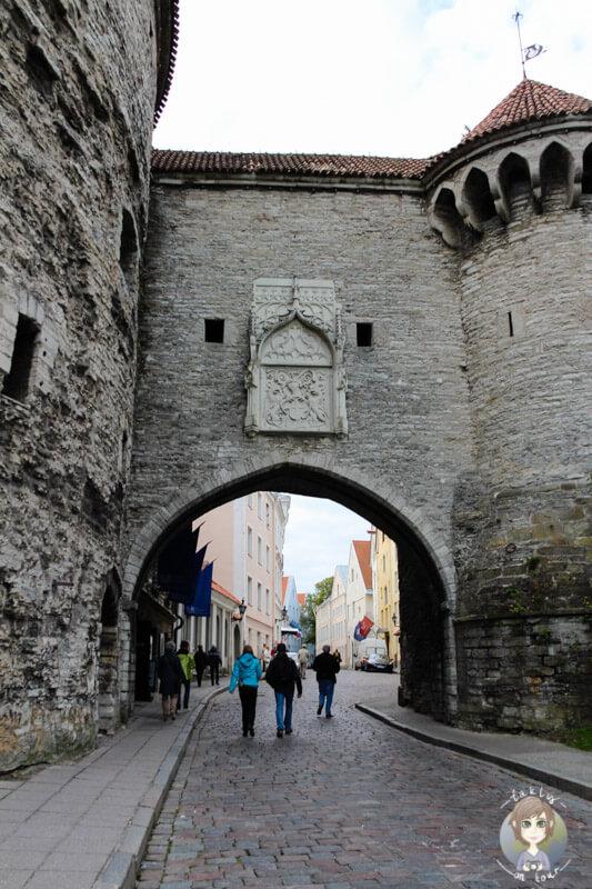 Die dicke Margarethe in Tallinn