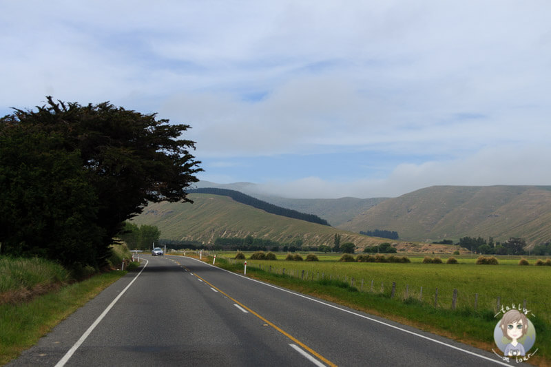 Fahrt über die Gebbies Pass Road