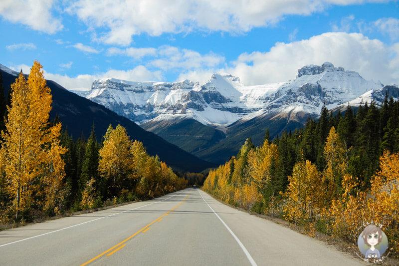der wunderschöne Icefields Parkway in Kanada im Herbst