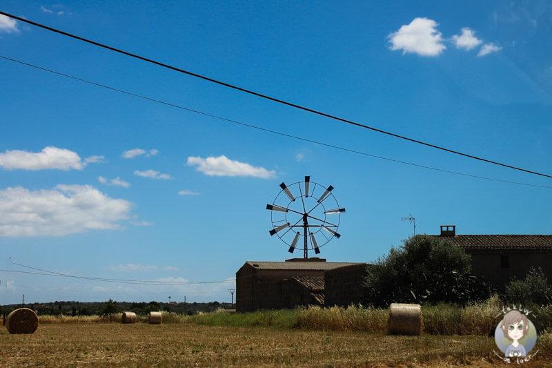 Eine Mühle auf Mallorca, eine typische Landschaft im Osten der Insel