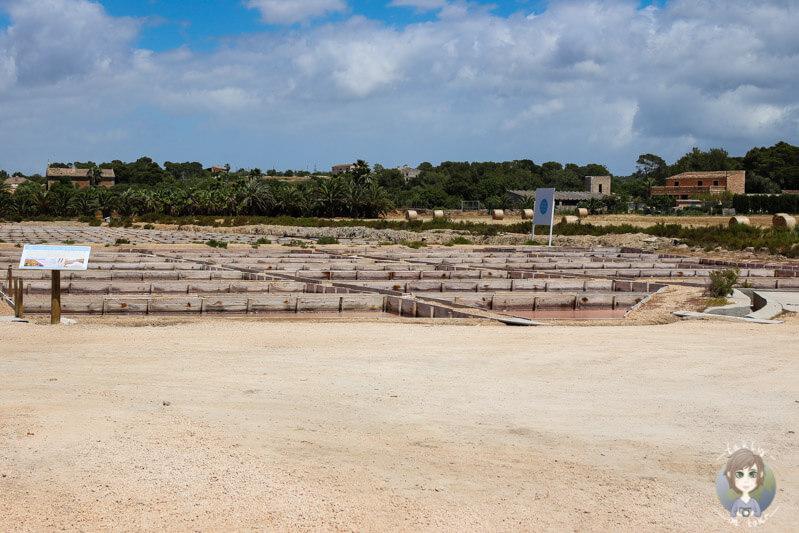 Das Gelände der Salzsalinen von Es Trenc, Mallorca