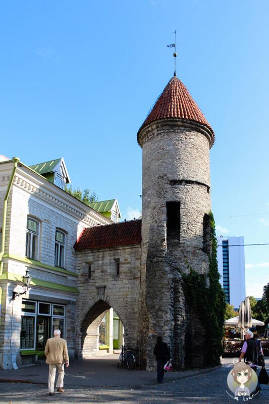 Viru-Stadttor in Tallinn - Wahrzeichen der Stadt