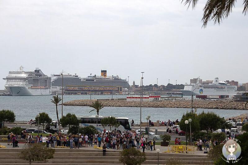 Aussicht von dem Vorplatz der Kathedrale La Seu auf den Hafen