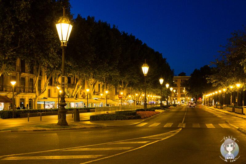 Die Av. d´Antoni Maura in Palma am Abend