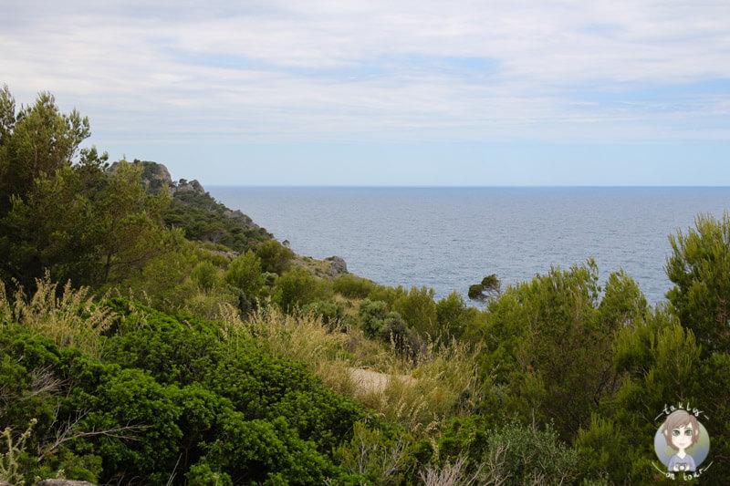 Die Aussicht auf die Steilküste vor Port de Sóller, Mallorca