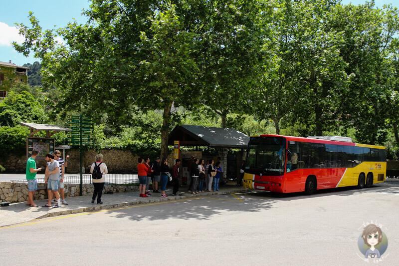 Mit dem Bus nach Valldemossa, Mallorca