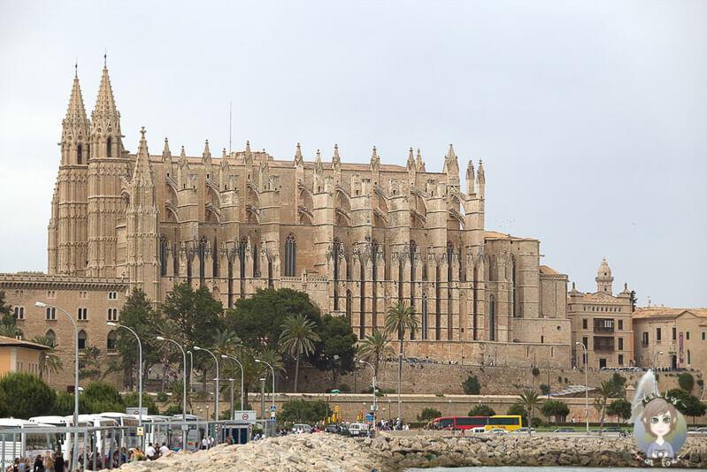 Blick auf die Kathedrale La Seu von Palma