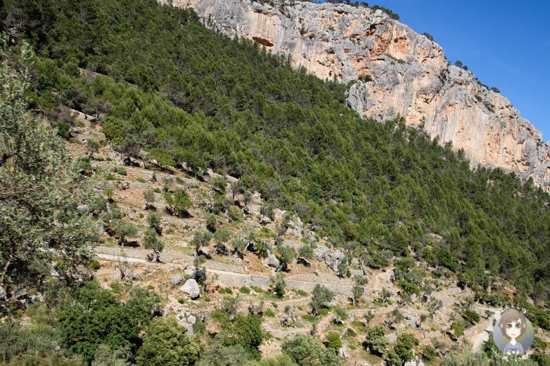 Eine tolle Berglandschaft über Alaró