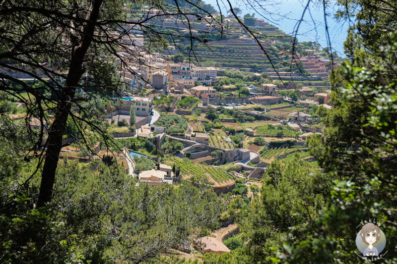 Blick auf terrassenförmig angeordnete Dorf Banyalbufar, Mallorca