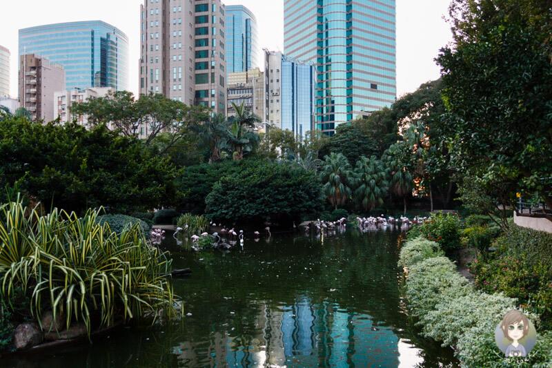 Der Kowloon Park liegt inmitten der Hochhäuser von Hong Kong