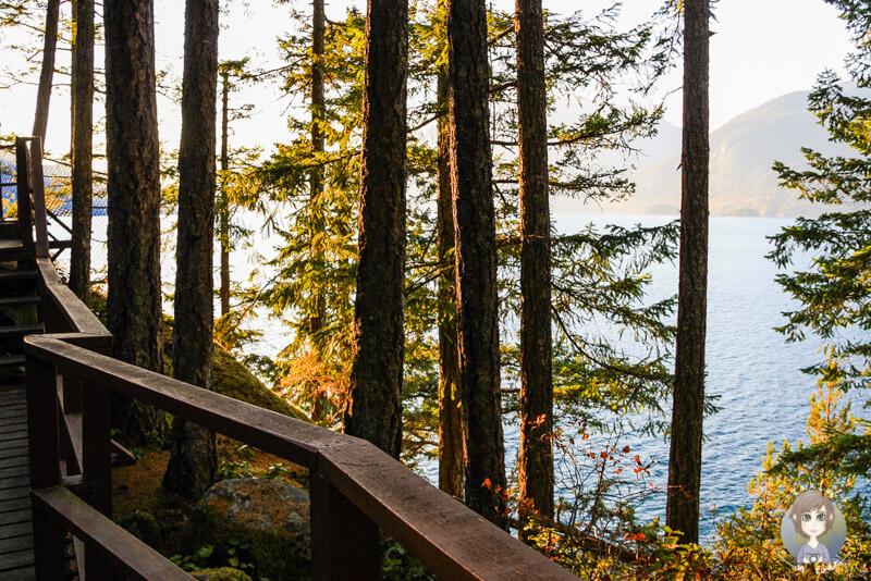 Wanderweg im Porteau Cove Provincial Park, Kanada