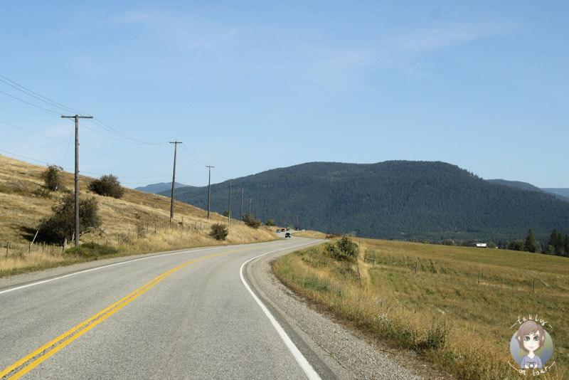 Auf der Fahrt zum Upper Arrow Lake, BC, Kanada