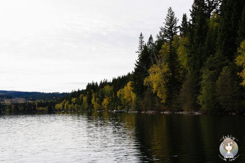 Der wunderschöne Birch Lake, Kanada