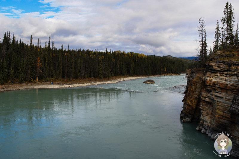 Blick über den Athabasca River, Kanada
