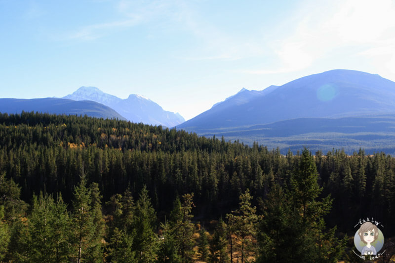 Blick über den Jasper National Park, Kanada