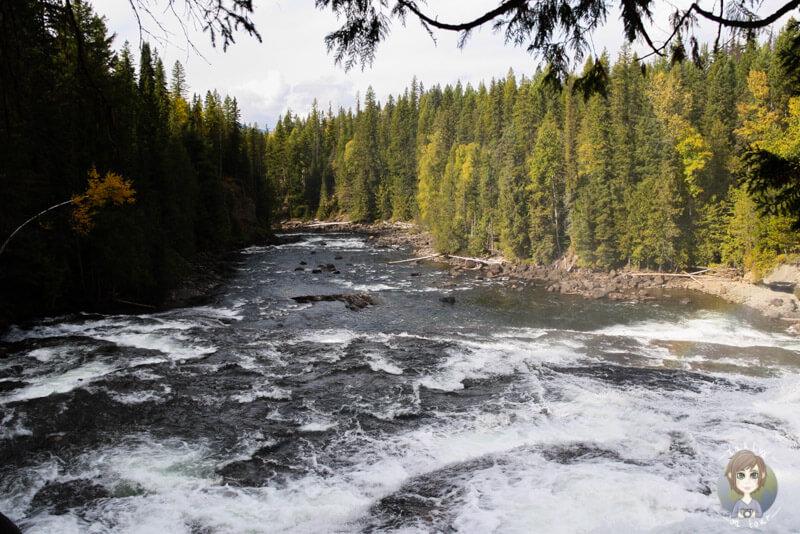 Blick über die Dawson Falls, Kanada
