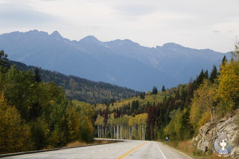 Highway bei Valemount, BC, Kanada