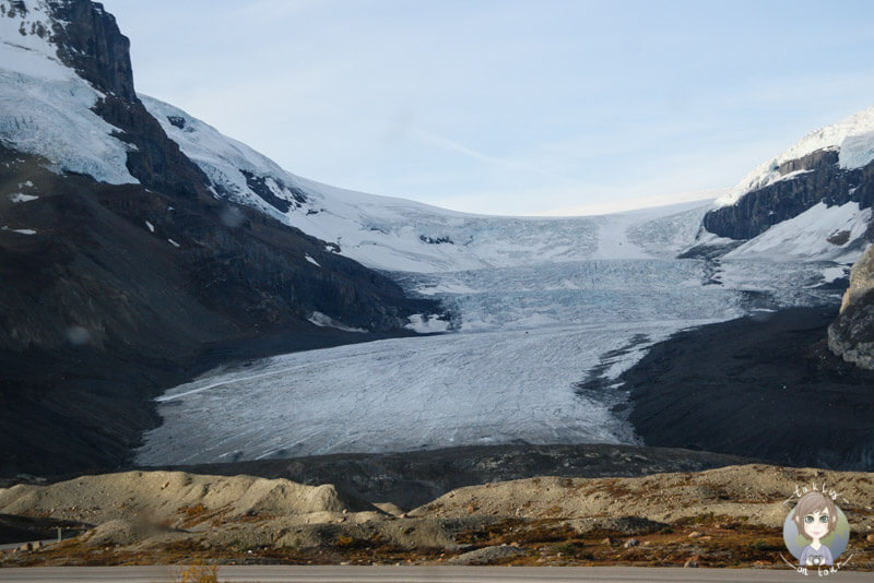 Blick auf das Columbia Icefield, Jasper National Park, Kanada