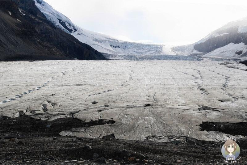 Der Athabasca-Gletscher, Jasper National Park, Kanada