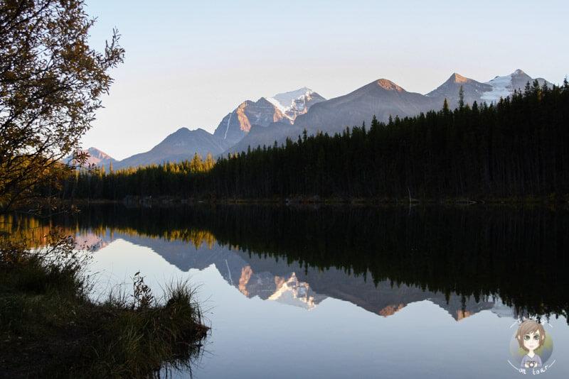 Der Herbert Lake ist einer der ersten traumhaften Seen entlang des Icefields Parkway, Kanada