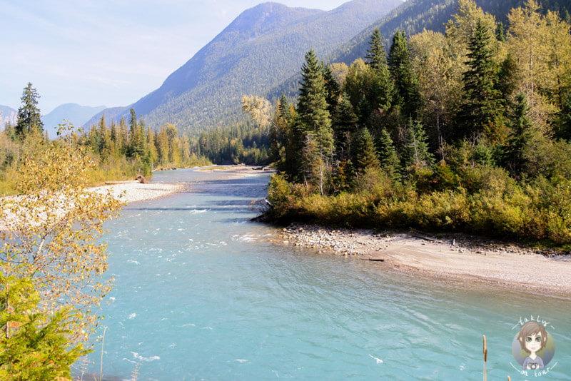 Der Illecillewaet River entlang des TCH, Revelstoke National Park, Kanada