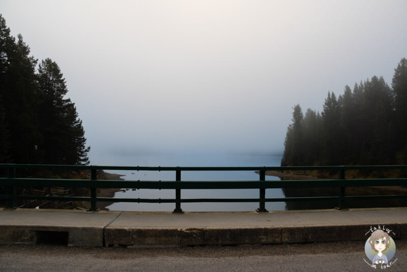 Wegen dem Nebel war der Maligne Lake kaum zu sehen