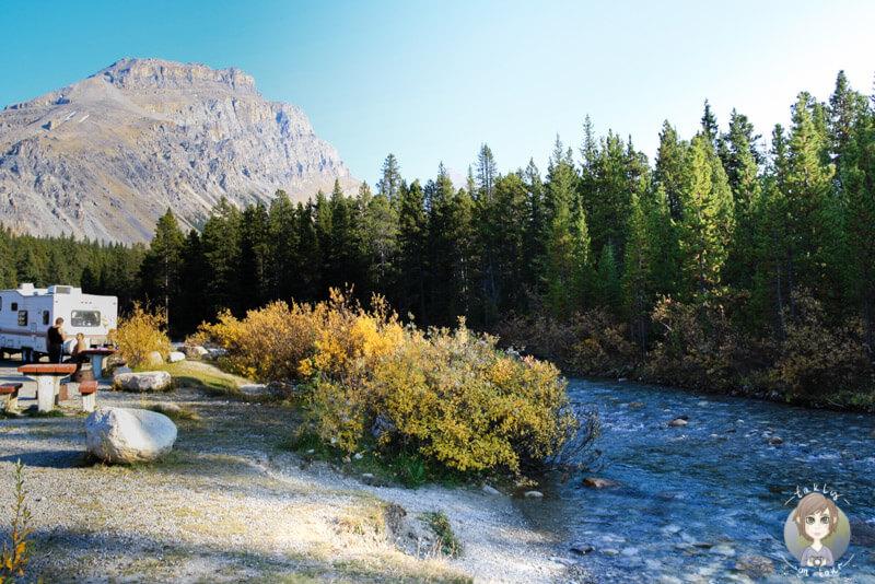 Campingplatz direkt am Mosquito Creek, Icefields Parkway, Kanada
