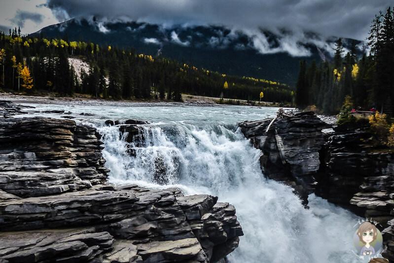 Die Athabasca Falls im Jasper Nationalpark, Kanada