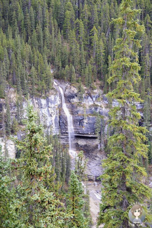 Die Bridal Veil Falls, Icefields Parkway, Kanada