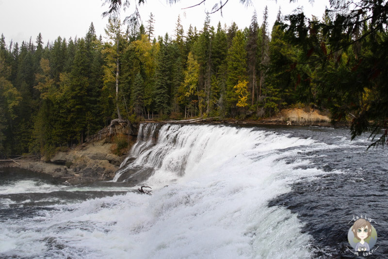 Die Dawson Falls im Wells Gray Provincial Park, BC, Kanada