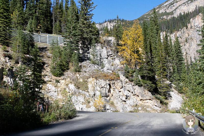 Die Straße zu den Takkakaw Falls, Kanada