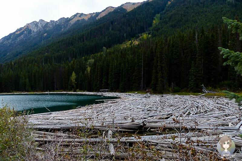 Duffey Lake, Kanada