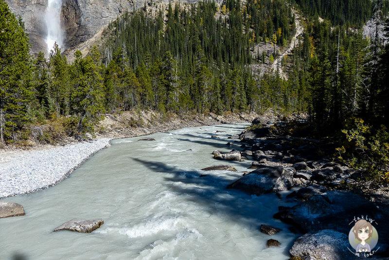 Ein Fluss unterhalb der Takakkaw Falls, Kanada