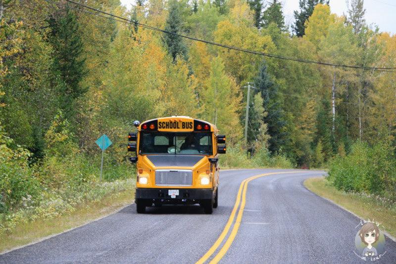 Ein Schulbus im Wells Gray Provincial Park, Kanada