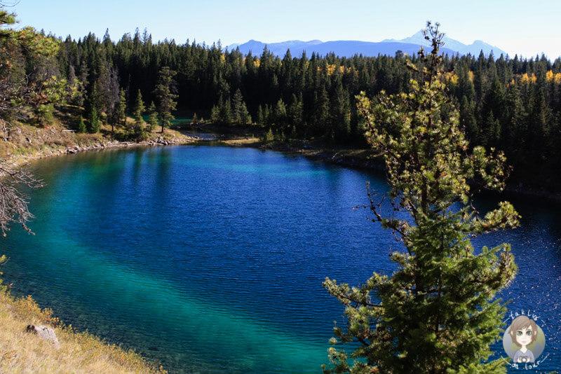 Einer der türkisschimmernden Seen im Valley of the Five Lakes, Kanada