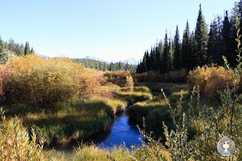 Valley of the five Lakes, Jasper National Park, Kanada