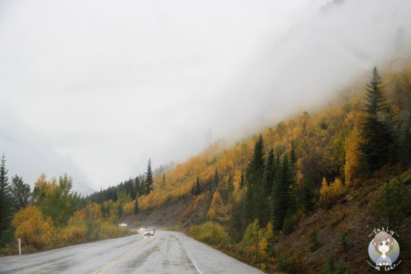 Die Traumstraße von Kanada, der Icefields Parkway im Regen