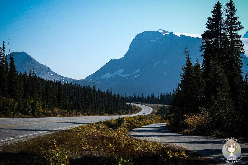 Die Traumstraße von Kanada, der Icefields Parkway