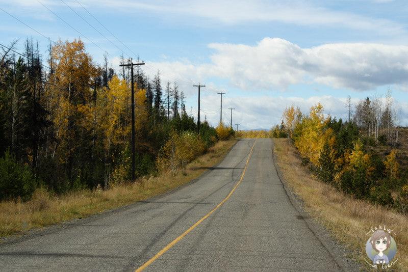 Fahrt Richtung Green Lake, BC, Kanada