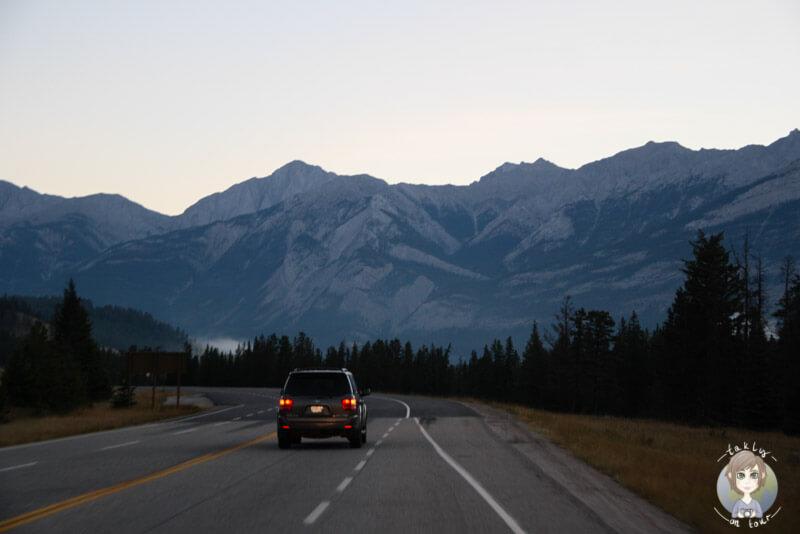 Fahrt Richtung Maligne Road, Jasper, Kanada