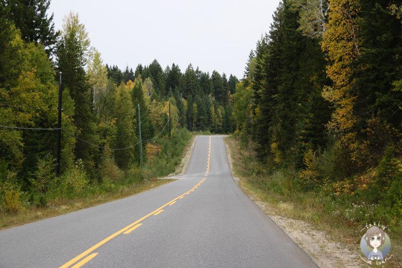 Auf der Fahrt durch den Wells Gray Park, Kanada