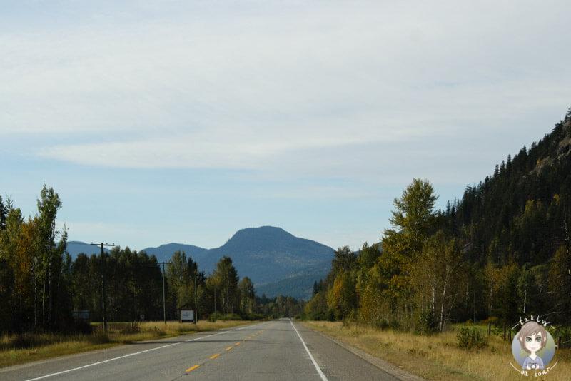 Fahrt durch den Wells Gray Provincial Park, BC, Kanada